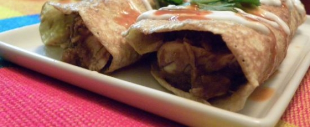 Dukan Diet Recipe Chicken Mole Enchiladas