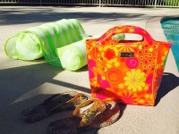 Dukan Diet Recipes Hadaki Insulated Lunch Tote