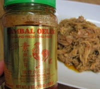 Dukan Diet Recipe Sweet and Spicy Pulled Chicken